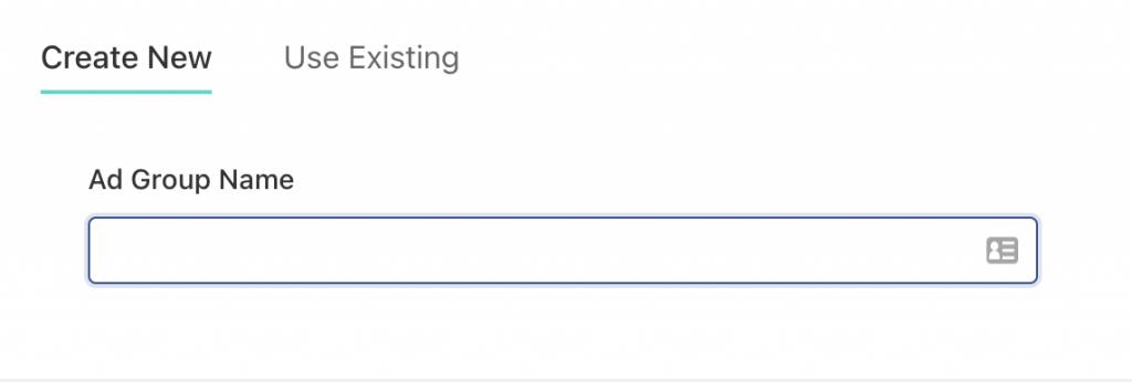 Fill in TikTok ad group name