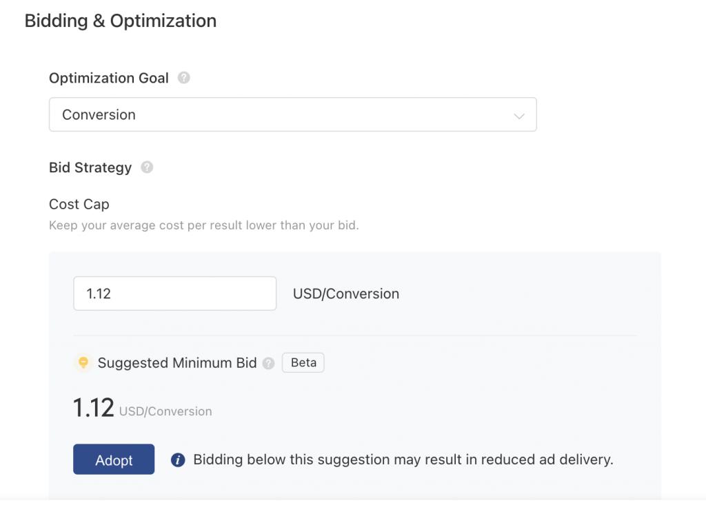 TikTok Ads bidding & optimization